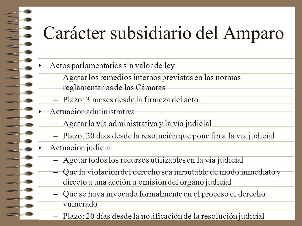 Carácter subsidiario del Amparo