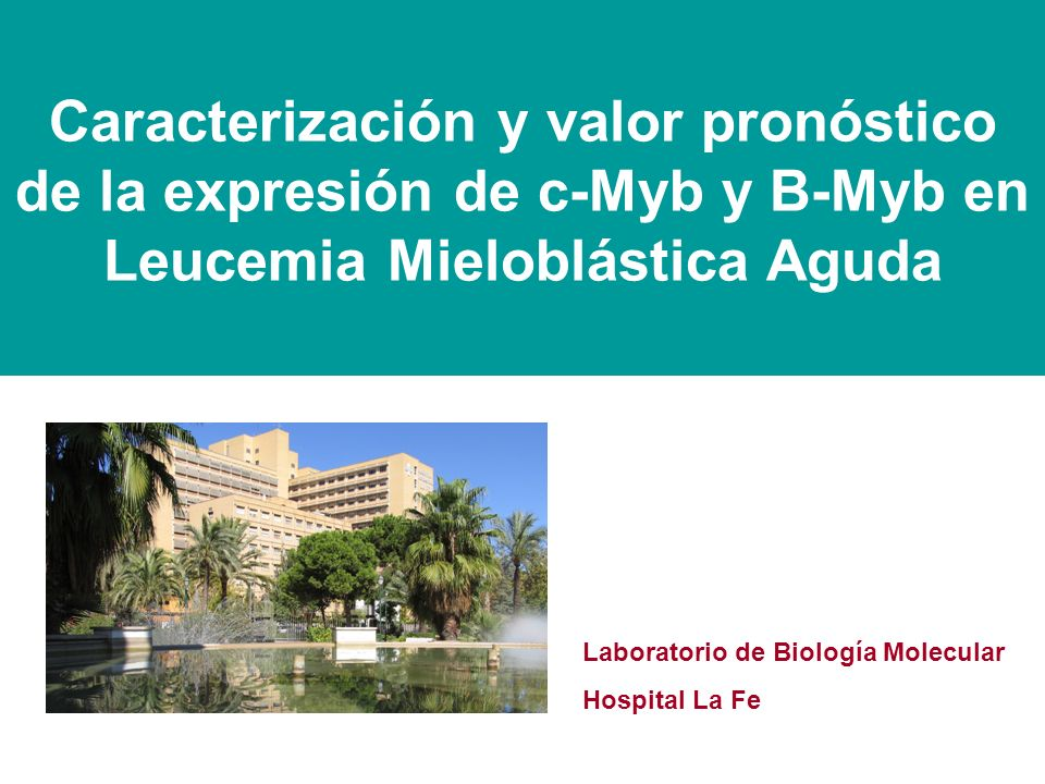 Caracterización y valor pronóstico de la expresión de c-Myb y B-Myb en Leucemia Mieloblástica Aguda