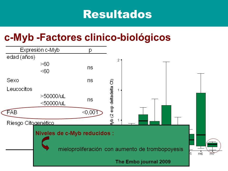 Resultados c-Myb -Factores clinico-biológicos