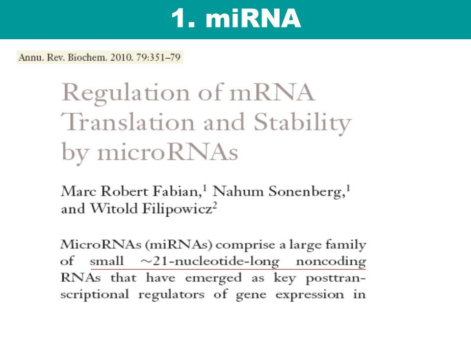 1. miRNA