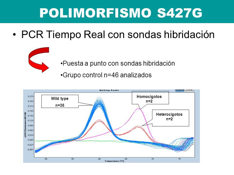 POLIMORFISMO S427G PCR Tiempo Real con sondas hibridación