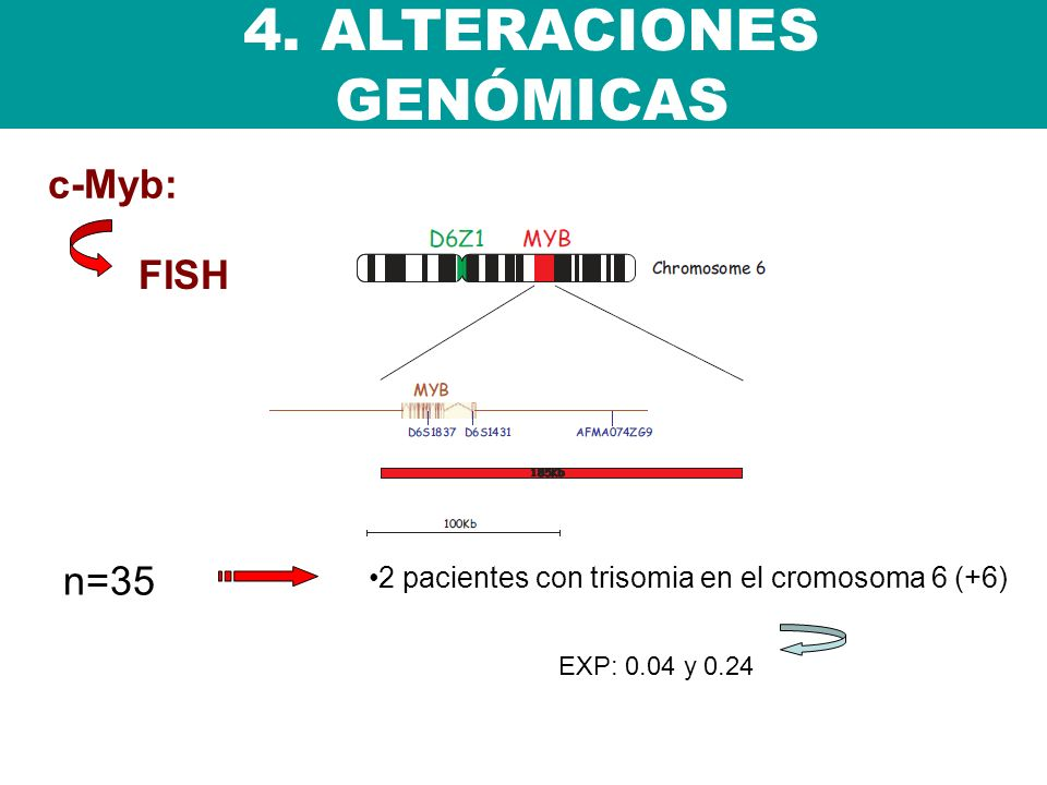 4. ALTERACIONES GENÓMICAS