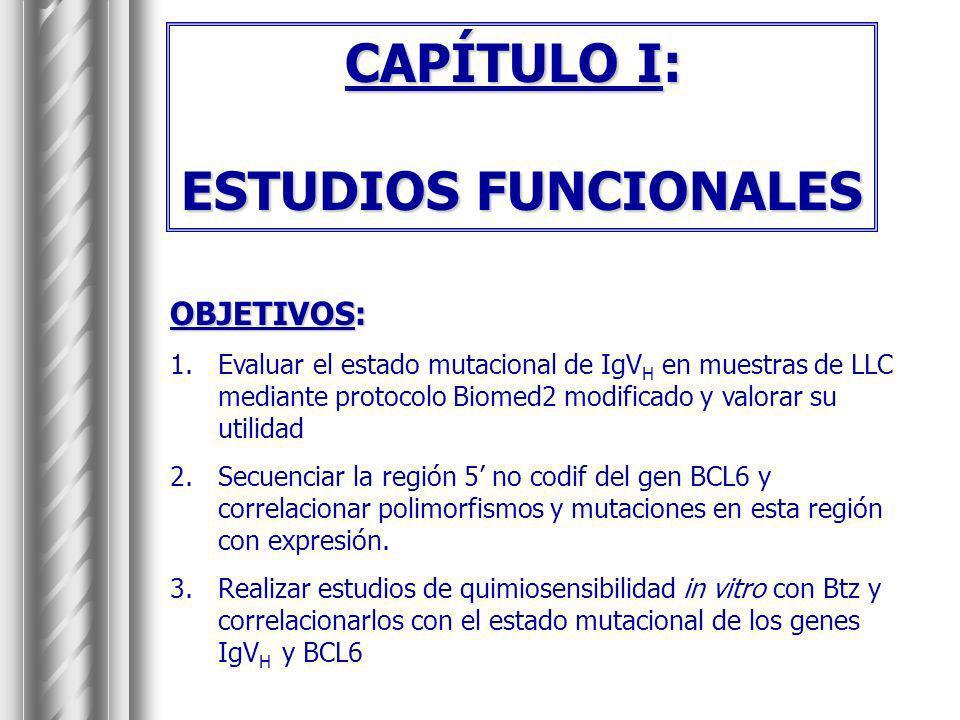 CAPÍTULO I: ESTUDIOS FUNCIONALES