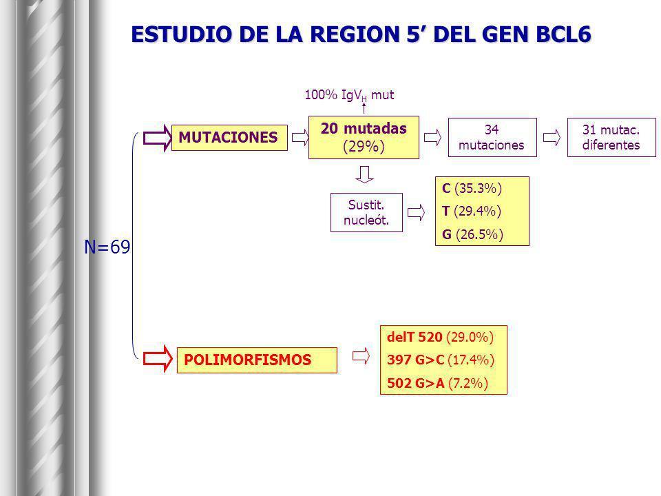 ESTUDIO DE LA REGION 5' DEL GEN BCL6