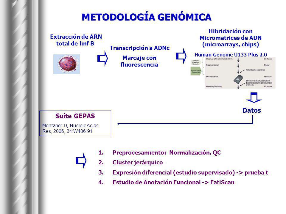 METODOLOGÍA GENÓMICA Extracción de ARN total de linf B Datos