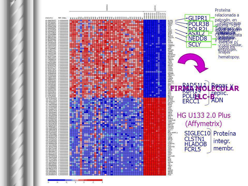 FIRMA MOLECULAR LLC-B HG U133 2.0 Plus (Affymetrix)