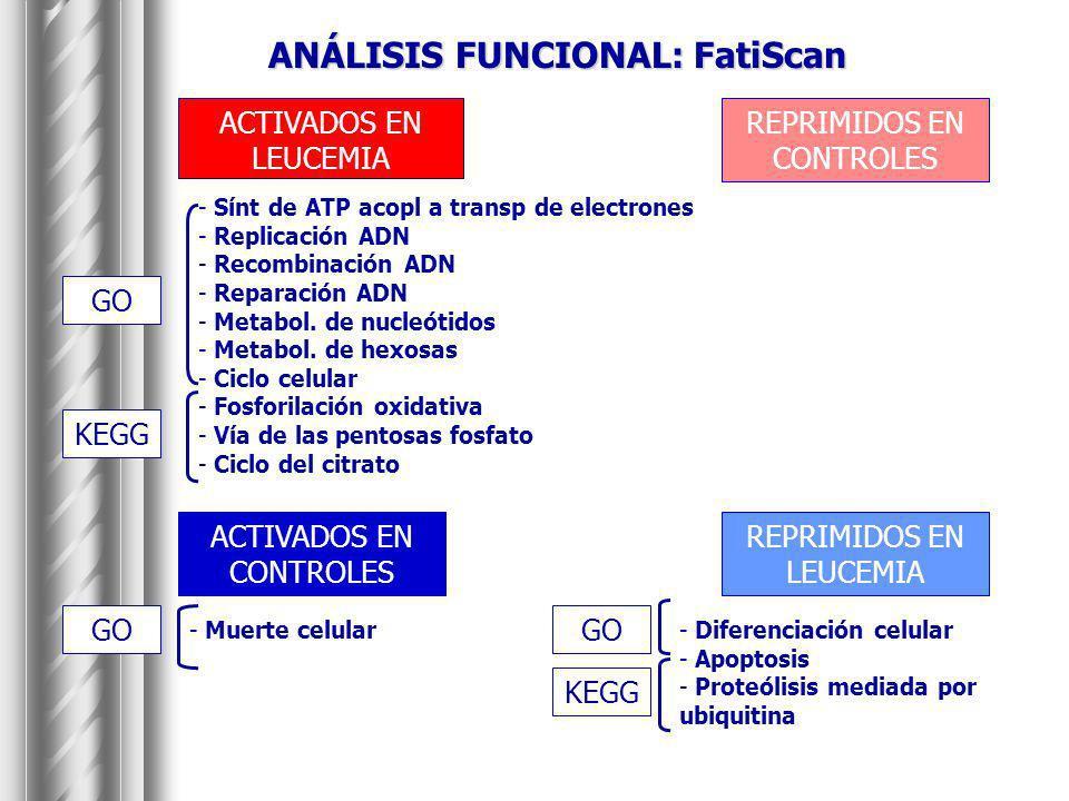 ANÁLISIS FUNCIONAL: FatiScan