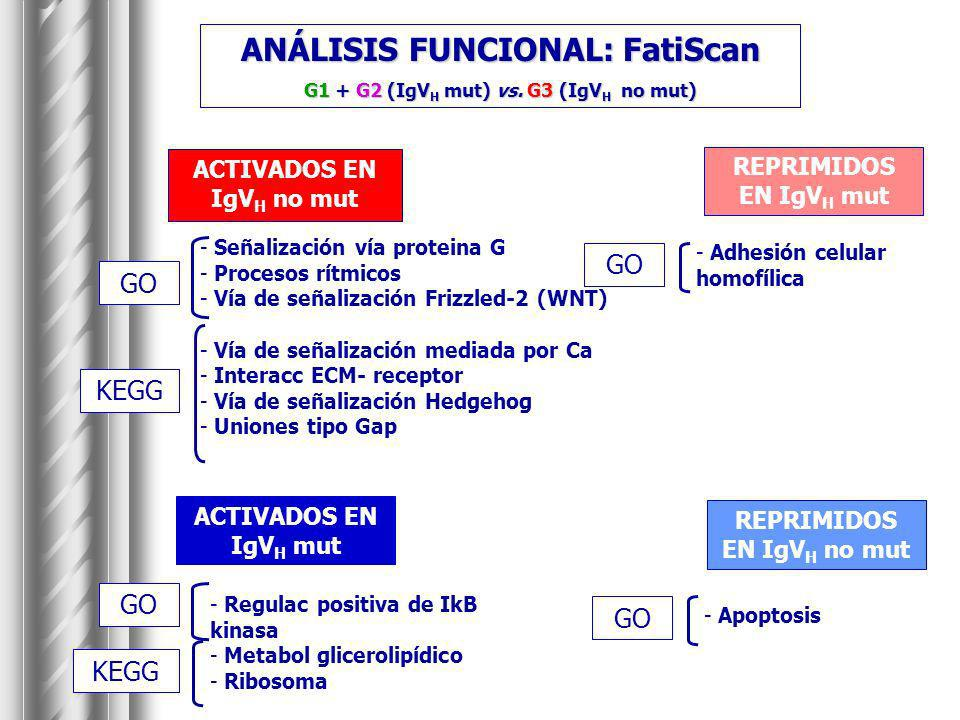 ANÁLISIS FUNCIONAL: FatiScan G1 + G2 (IgVH mut) vs. G3 (IgVH no mut)