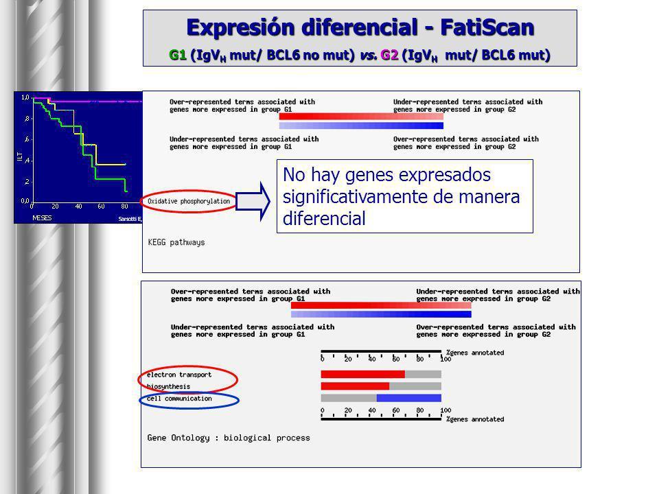 Expresión diferencial - FatiScan