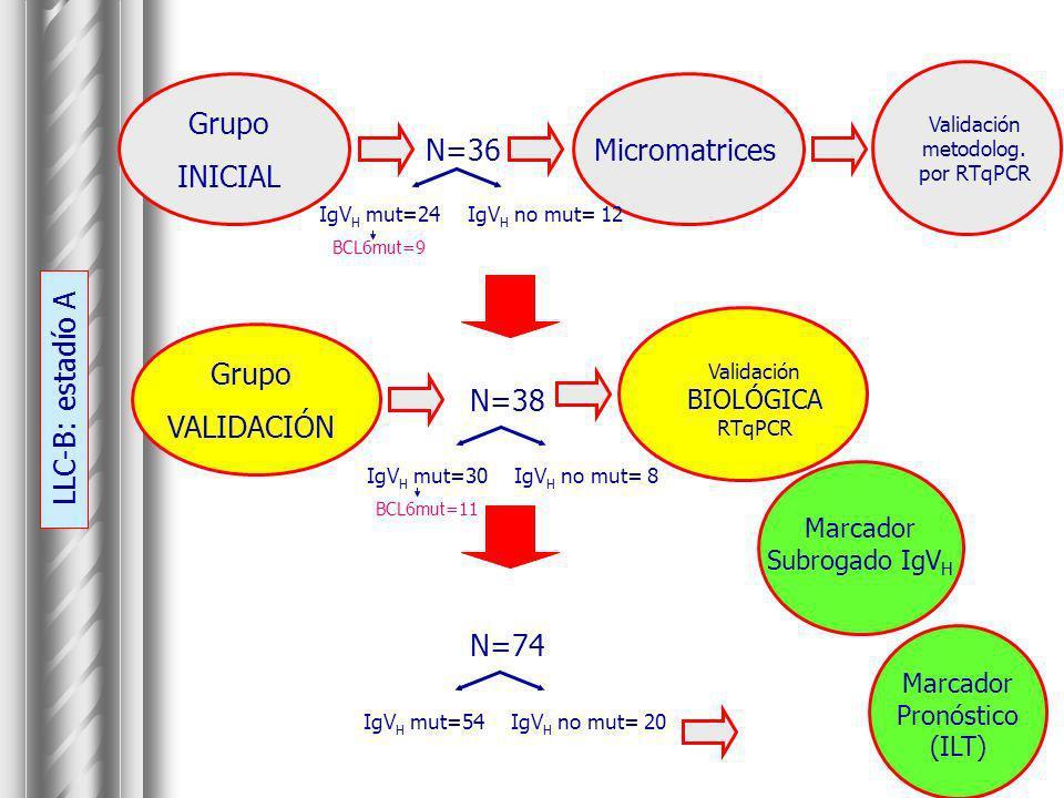 Grupo INICIAL Micromatrices N=36 Grupo VALIDACIÓN N=38