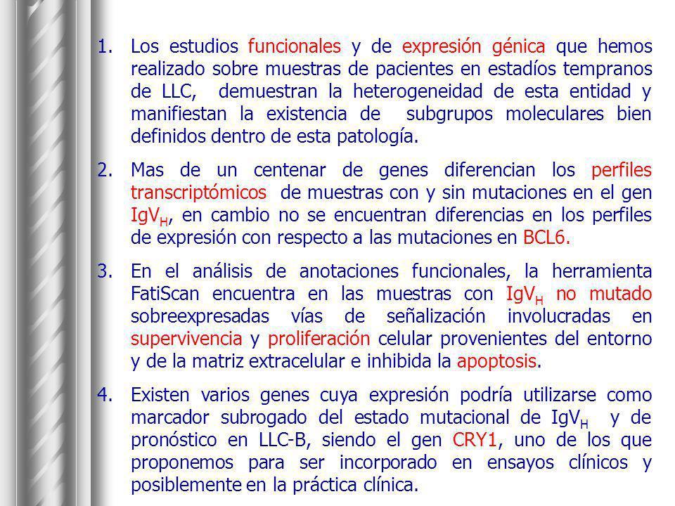 Los estudios funcionales y de expresión génica que hemos realizado sobre muestras de pacientes en estadíos tempranos de LLC, demuestran la heterogeneidad de esta entidad y manifiestan la existencia de subgrupos moleculares bien definidos dentro de esta patología.