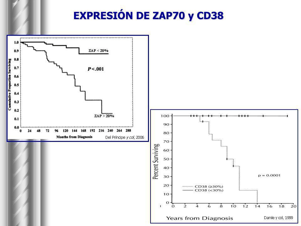 EXPRESIÓN DE ZAP70 y CD38