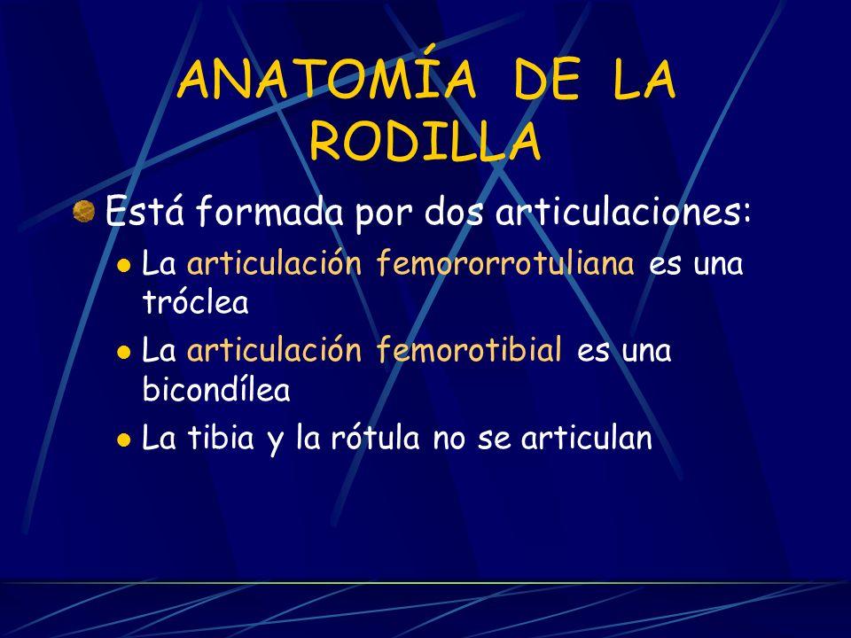ANATOMÍA DE LA RODILLA Está formada por dos articulaciones: