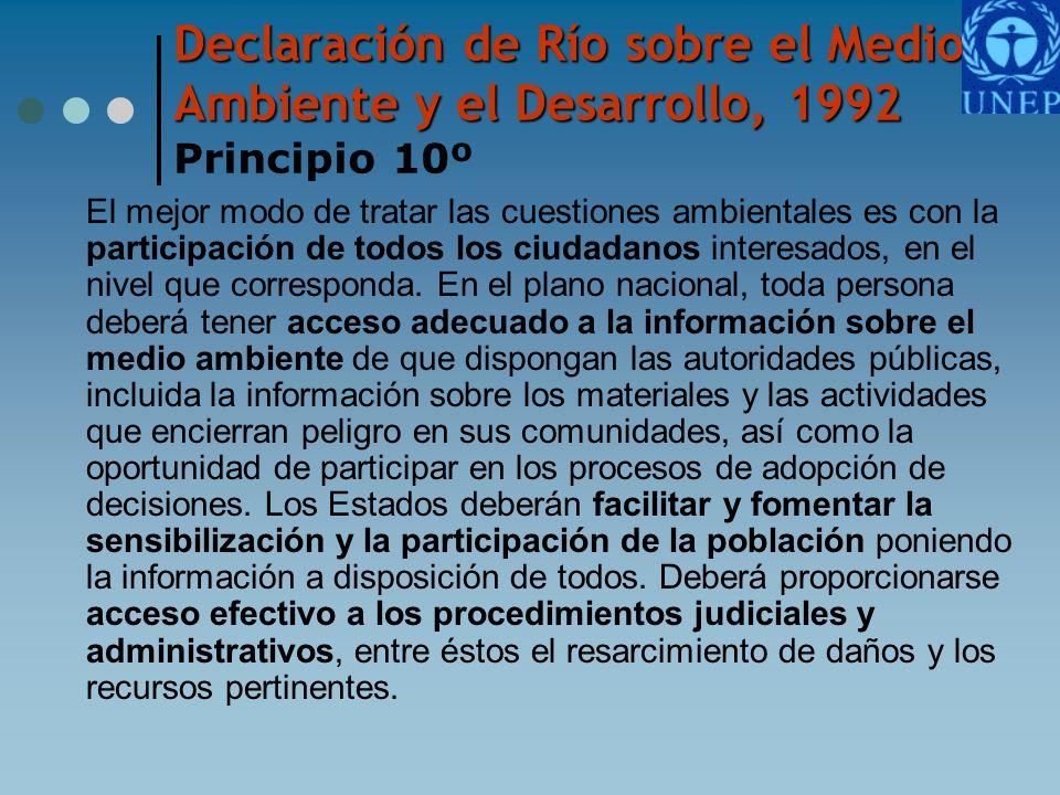 Declaración de Río sobre el Medio Ambiente y el Desarrollo, 1992 Principio 10º