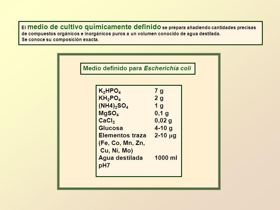 Medio definido para Escherichia coli
