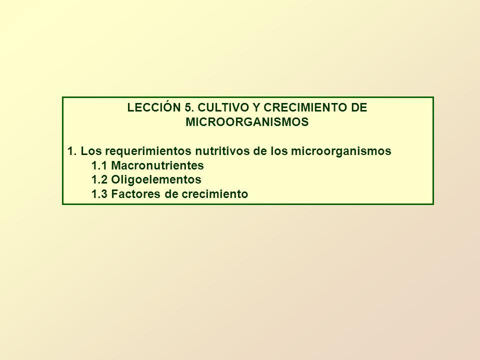 LECCIÓN 5. CULTIVO Y CRECIMIENTO DE MICROORGANISMOS