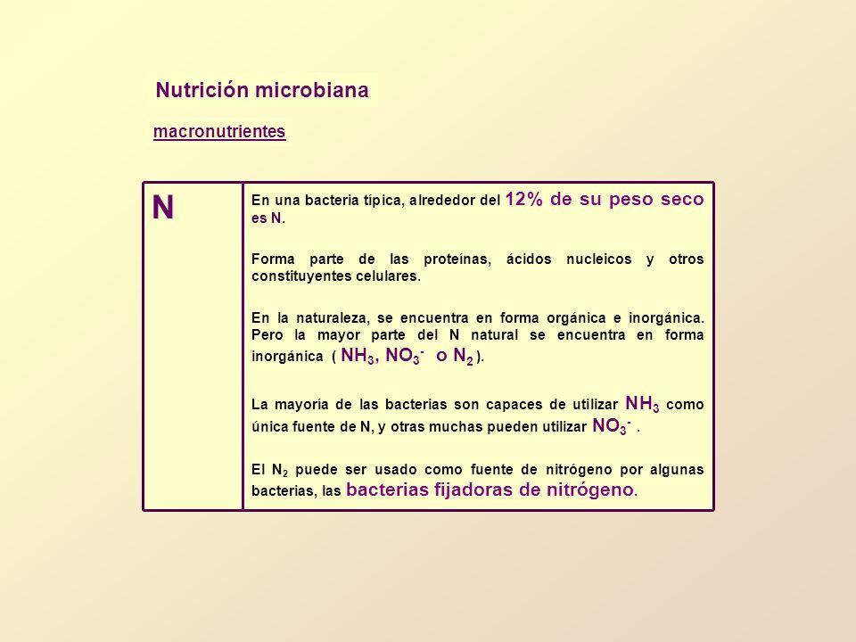N Nutrición microbiana macronutrientes
