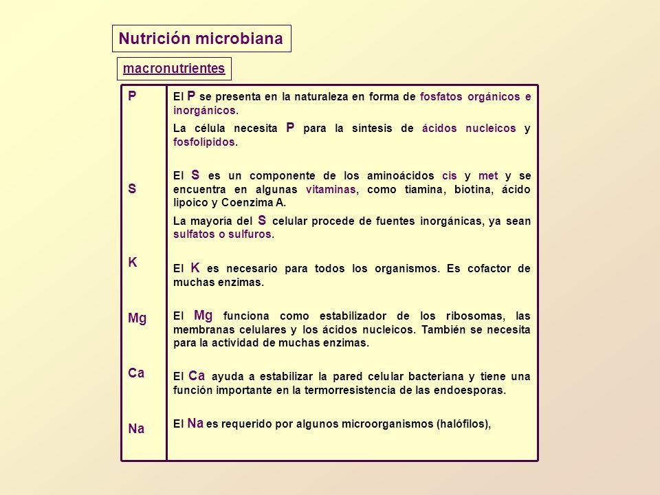 Nutrición microbiana macronutrientes P S K Mg Ca Na