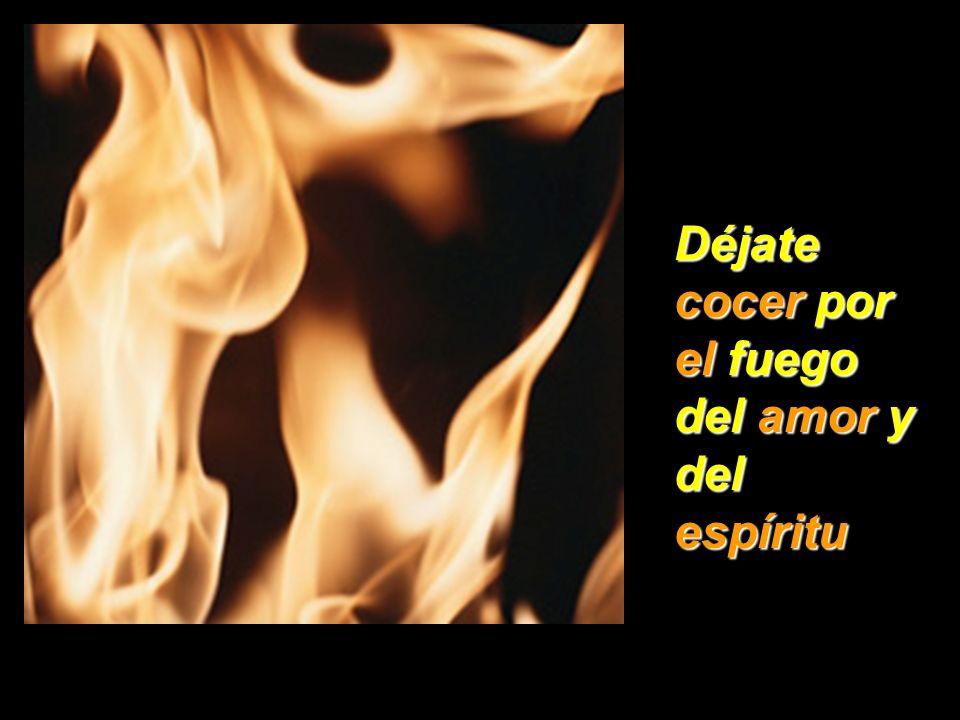Déjate cocer por el fuego del amor y del espíritu
