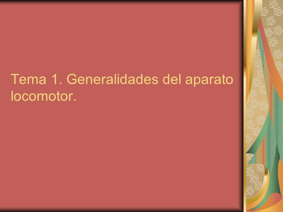 Tema 1. Generalidades del aparato locomotor.