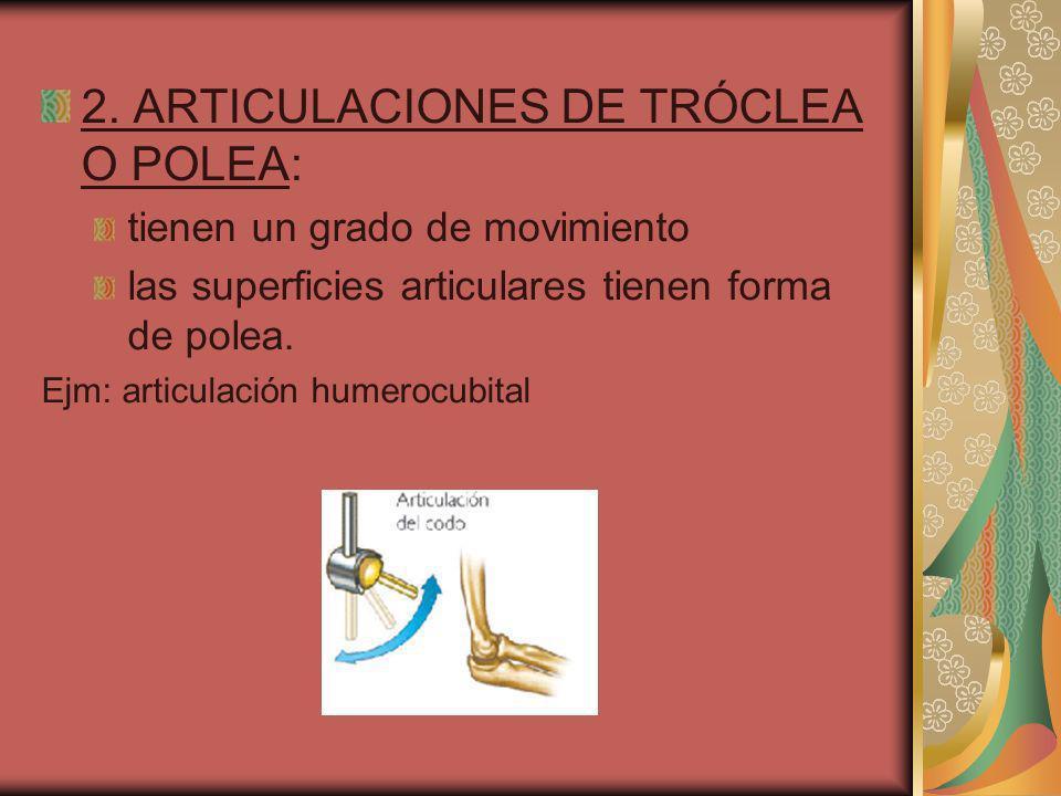 2. ARTICULACIONES DE TRÓCLEA O POLEA:
