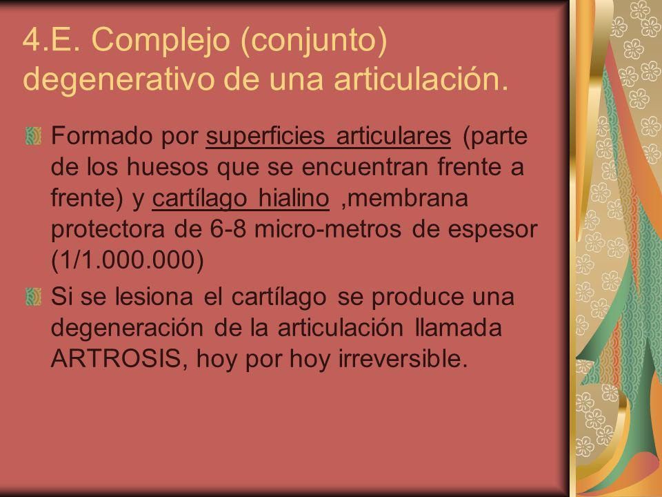 4.E. Complejo (conjunto) degenerativo de una articulación.