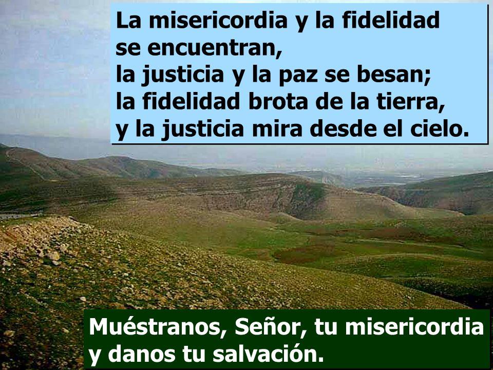 La misericordia y la fidelidad se encuentran, la justicia y la paz se besan; la fidelidad brota de la tierra, y la justicia mira desde el cielo.