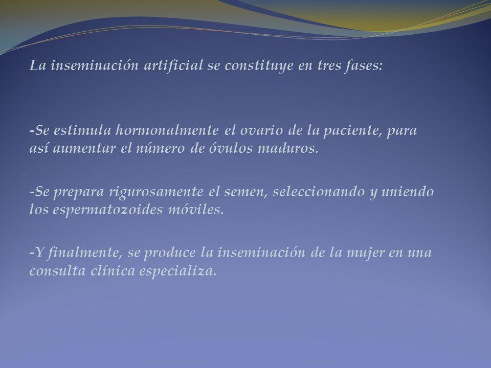 La inseminación artificial se constituye en tres fases: