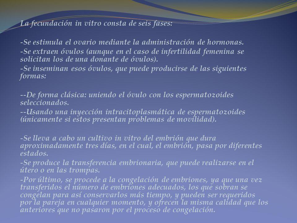 La fecundación in vitro consta de seis fases: