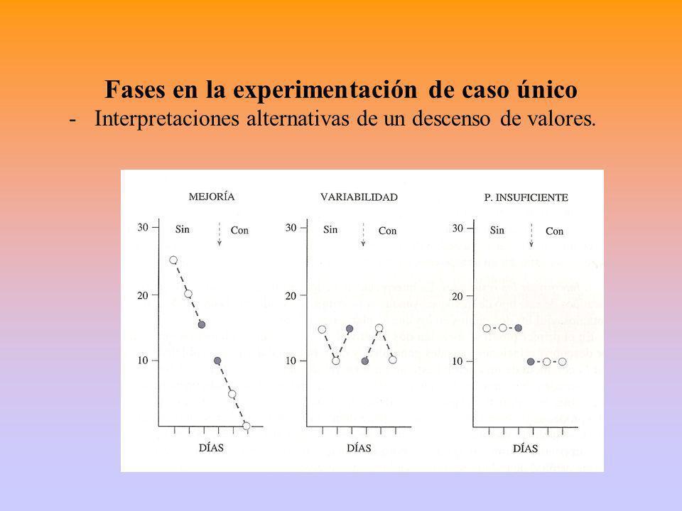 Fases en la experimentación de caso único