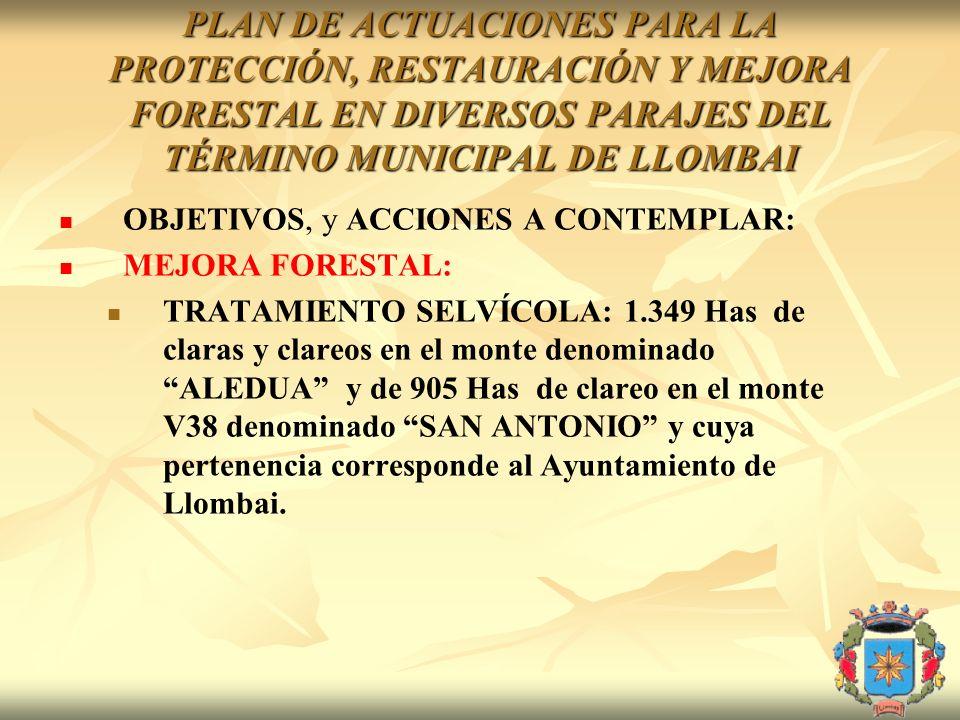 PLAN DE ACTUACIONES PARA LA PROTECCIÓN, RESTAURACIÓN Y MEJORA FORESTAL EN DIVERSOS PARAJES DEL TÉRMINO MUNICIPAL DE LLOMBAI