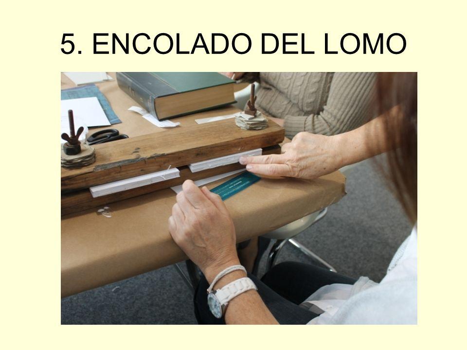5. ENCOLADO DEL LOMO