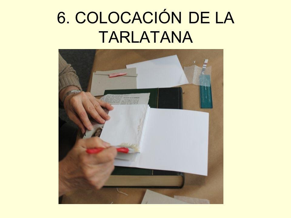 6. COLOCACIÓN DE LA TARLATANA