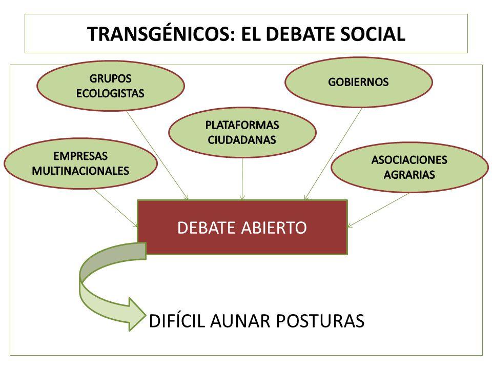 TRANSGÉNICOS: EL DEBATE SOCIAL