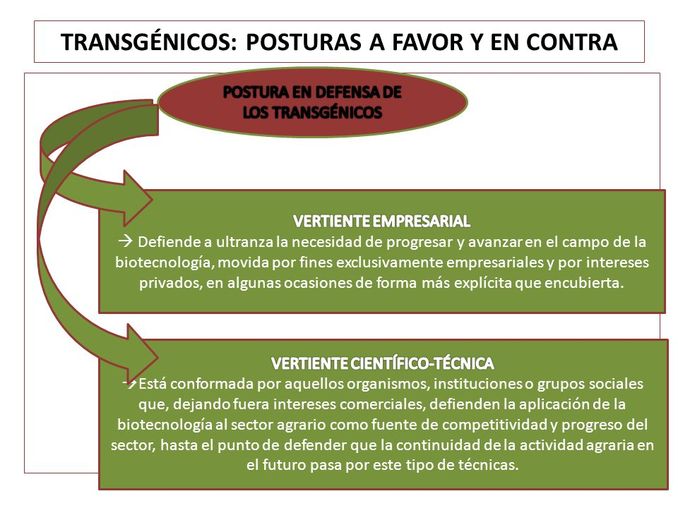 TRANSGÉNICOS: POSTURAS A FAVOR Y EN CONTRA