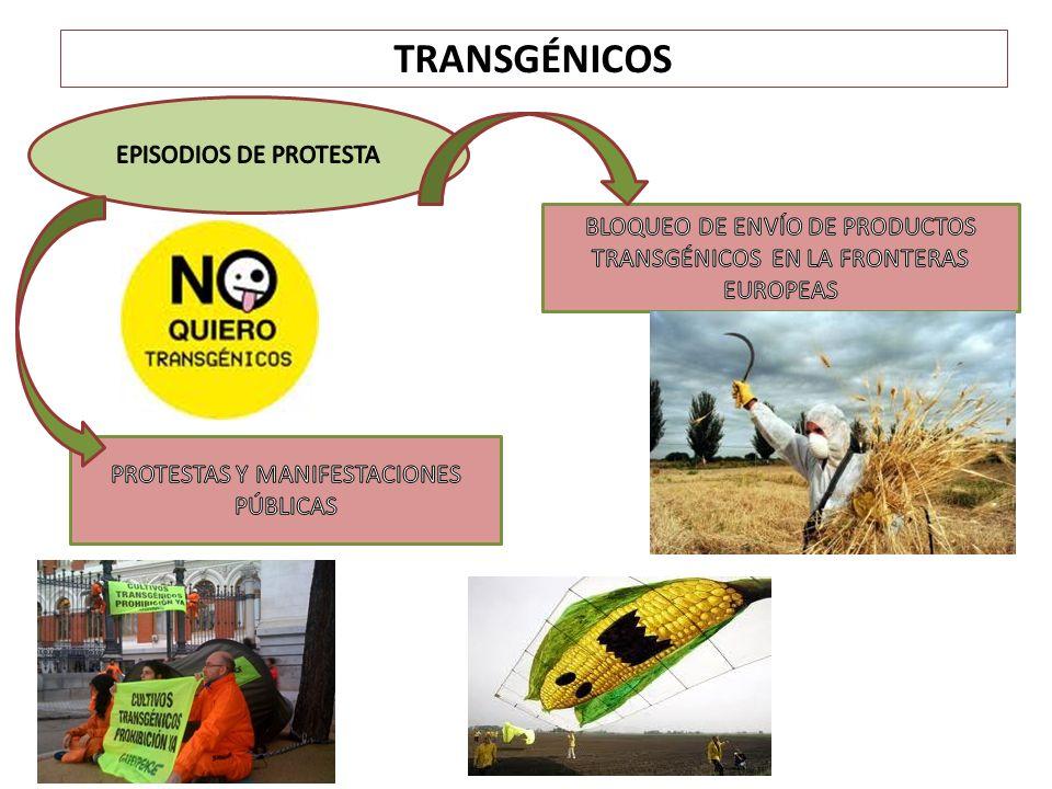 TRANSGÉNICOS EPISODIOS DE PROTESTA