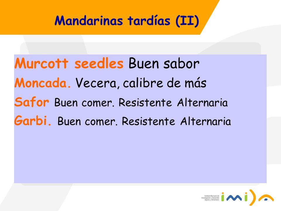 Mandarinas tardías (II)