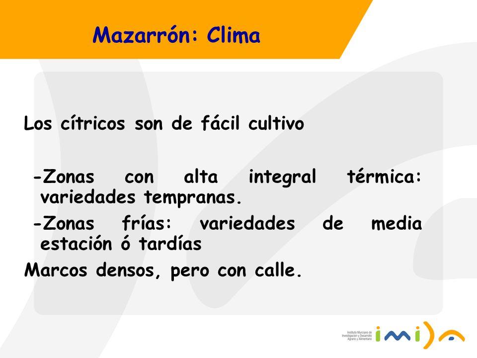 Mazarrón: Clima Los cítricos son de fácil cultivo