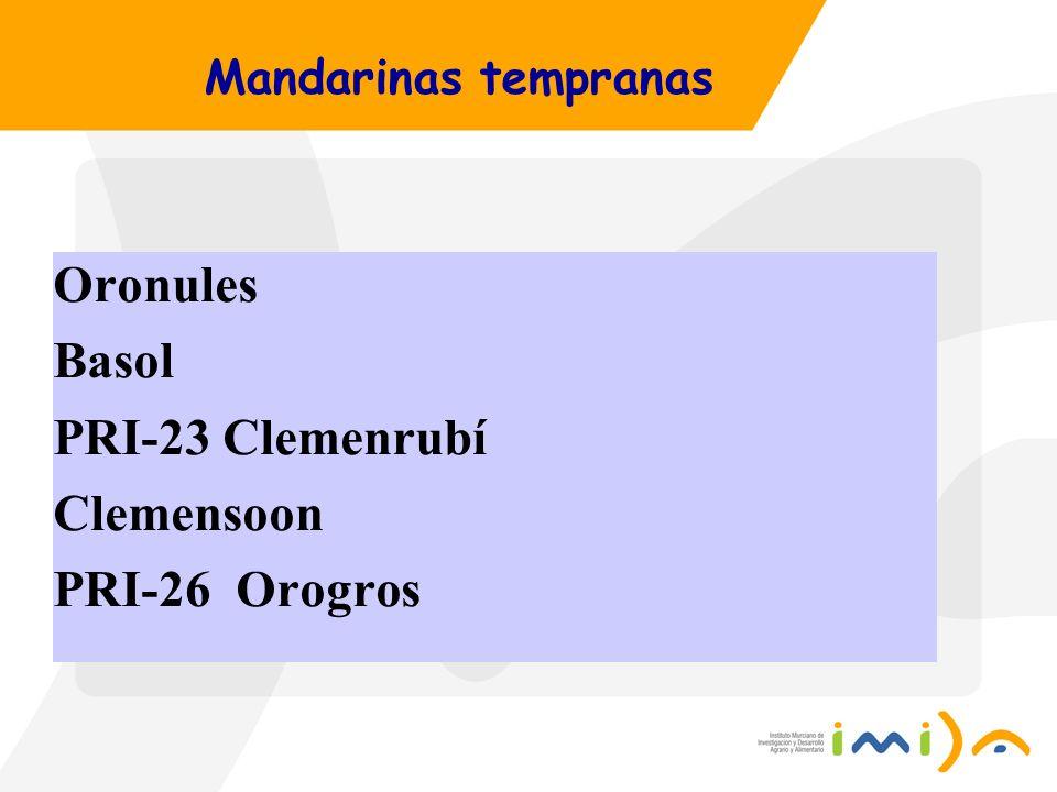 Oronules Basol PRI-23 Clemenrubí Clemensoon PRI-26 Orogros