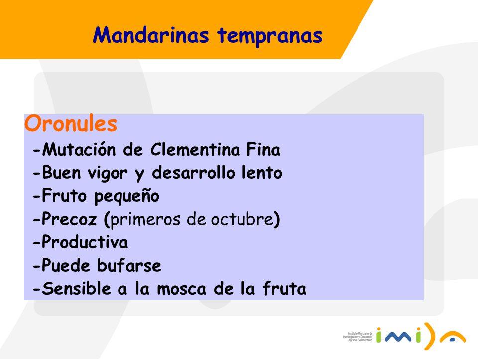 Oronules Mandarinas tempranas -Mutación de Clementina Fina