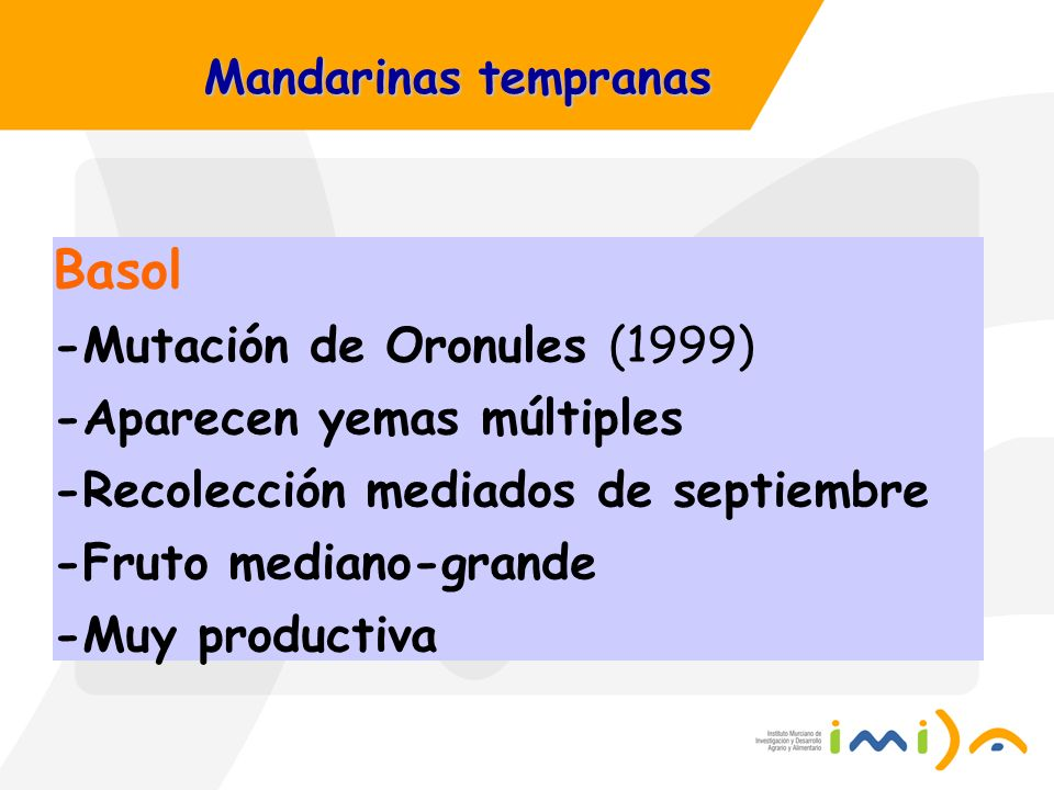 Basol -Mutación de Oronules (1999) -Aparecen yemas múltiples