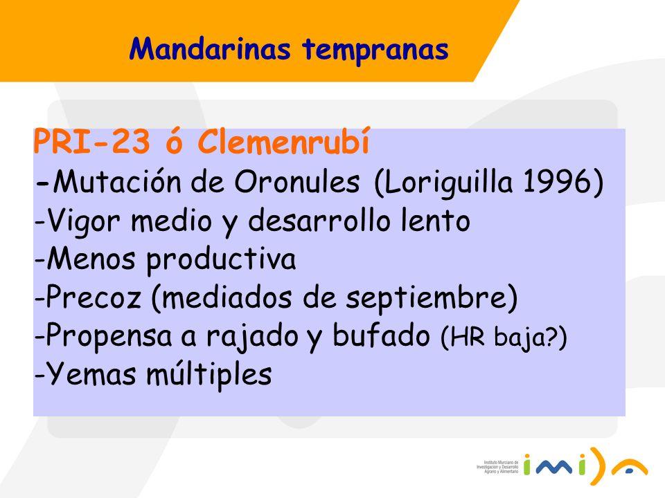 PRI-23 ó Clemenrubí -Mutación de Oronules (Loriguilla 1996)