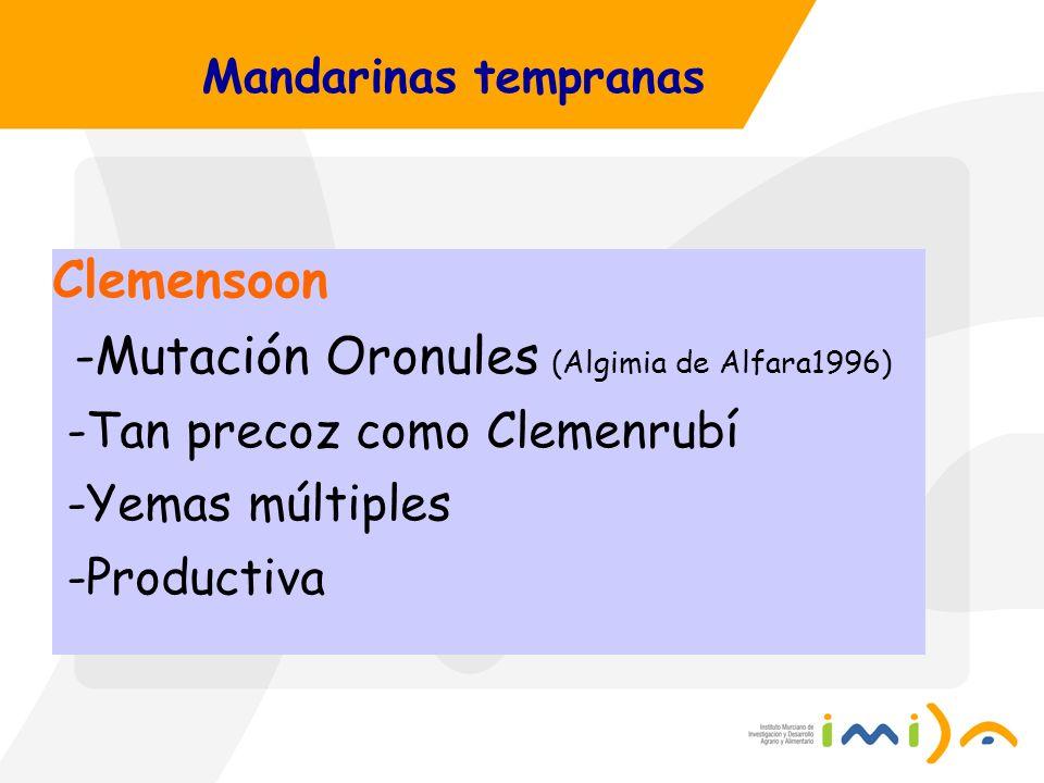 -Mutación Oronules (Algimia de Alfara1996)