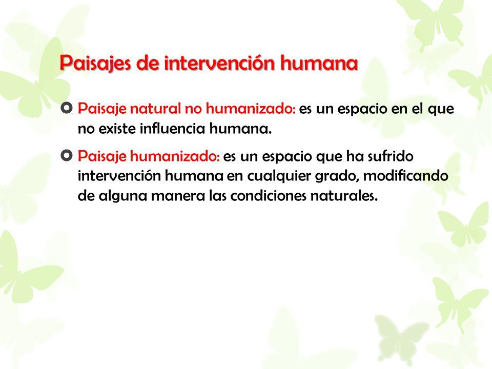 Paisajes de intervención humana