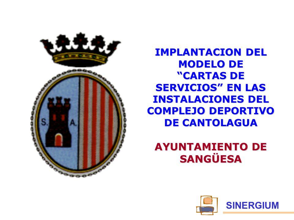 IMPLANTACION DEL MODELO DE AYUNTAMIENTO DE SANGÜESA