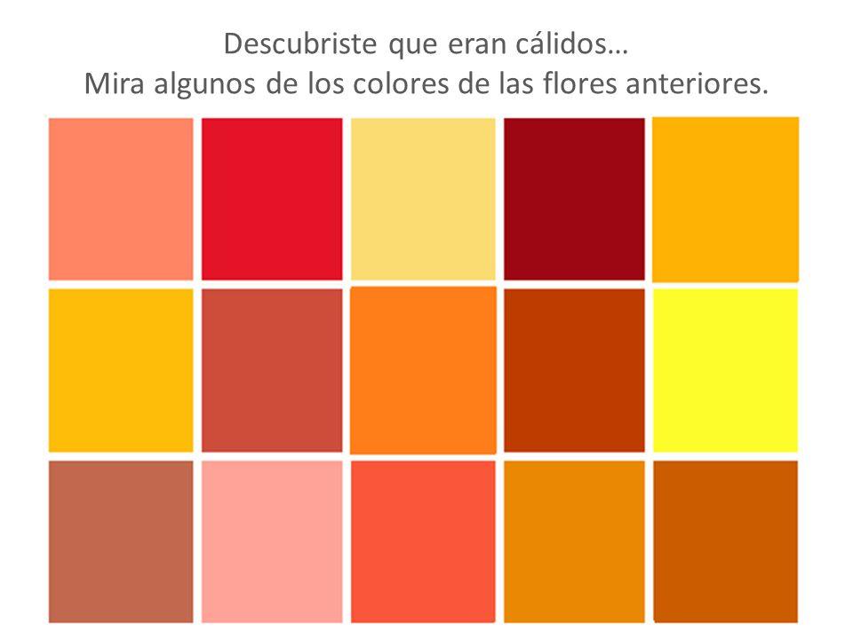 Colores fríos Colores cálidos - ppt video online descargar