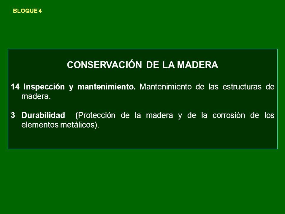 CONSERVACIÓN DE LA MADERA