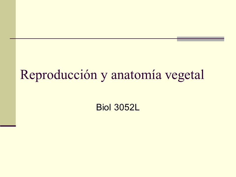 Reproducción y anatomía vegetal - ppt video online descargar