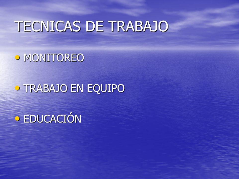 TECNICAS DE TRABAJO MONITOREO TRABAJO EN EQUIPO EDUCACIÓN