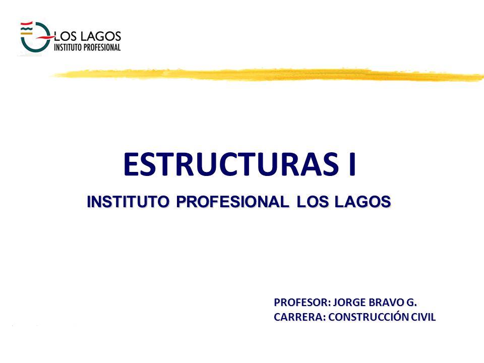 INSTITUTO PROFESIONAL LOS LAGOS